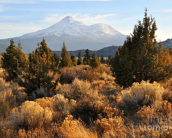 Mt Poster featuring the photograph Mount Shasta In The Fall by Gary Whitton