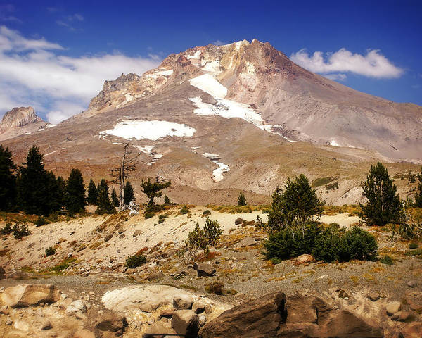 Mountains Poster featuring the photograph Mt. Hood by Marty Koch