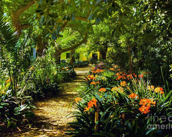 Muratie Gardens Simonsberg Area Sa Stellenbosch Poster featuring the photograph Muratie Gardens by Rick Bragan