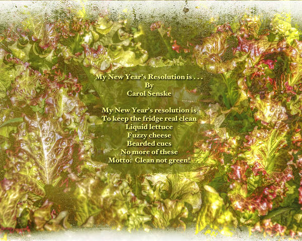 Poem Poster featuring the photograph My New Year's Resolution Is . . . Poem And Image by Mother Nature