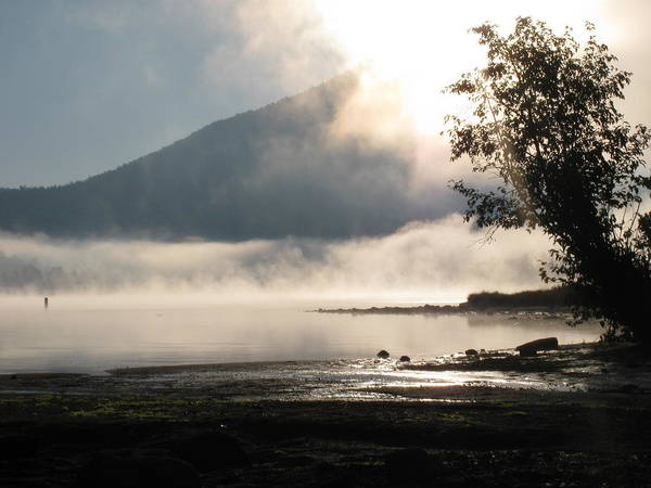Landscape Poster featuring the photograph Mystical Morning by Karen Briggs
