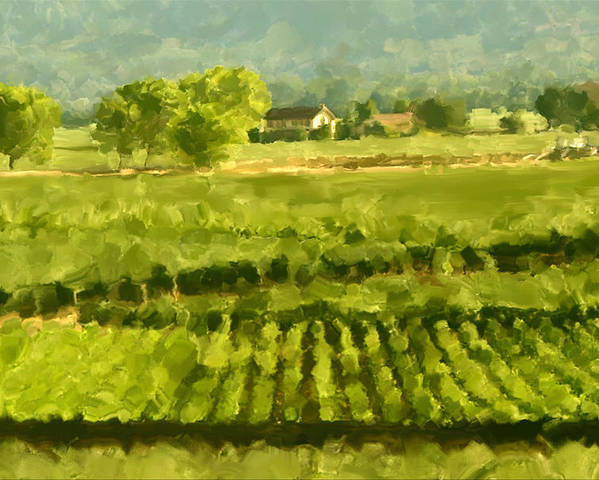 Napa Poster featuring the painting Napa Detail by Paul Tagliamonte