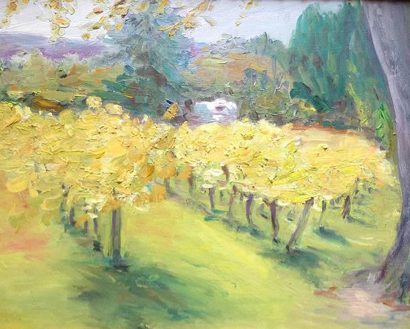 Napa Valley Landscape Poster featuring the painting Napa Vineyard by Barbara Anna Knauf