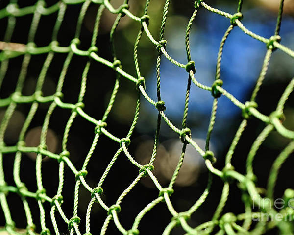 Photography Poster featuring the photograph Netting - Abstract by Kaye Menner