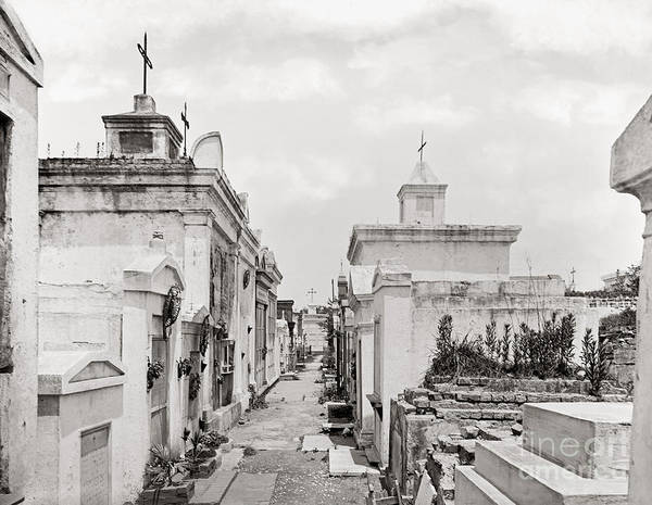 1901 Poster featuring the photograph New Orleans: Cemetery by Granger