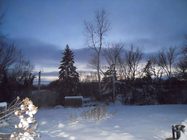 Snow Poster featuring the photograph New Year's Eve by Coleen Harty