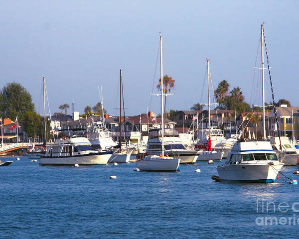 Harbor Poster featuring the photograph Newport Beach Harbor by Loretta Jean Photography