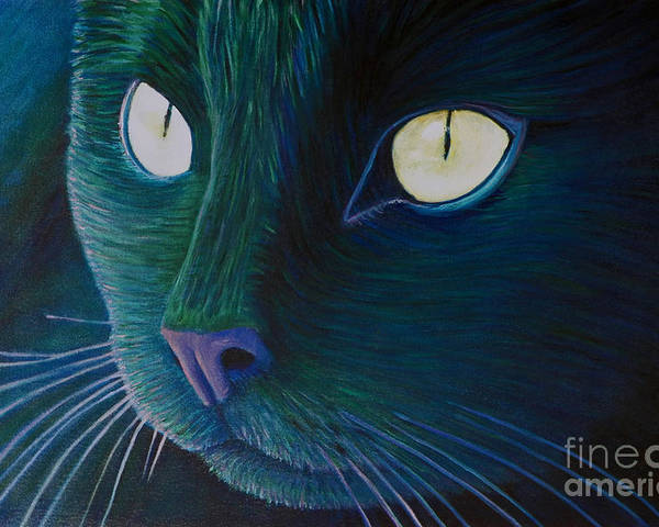Cat Poster featuring the painting Night Vision by Brian Commerford