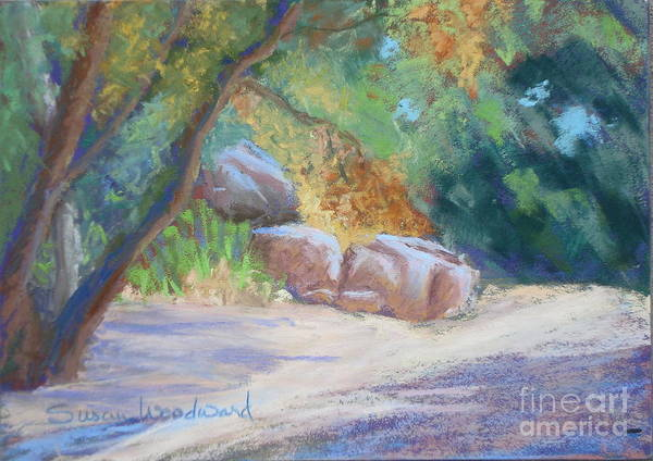 Dry Creekbed Poster featuring the painting No Water At Cienega Creek by Susan Woodward
