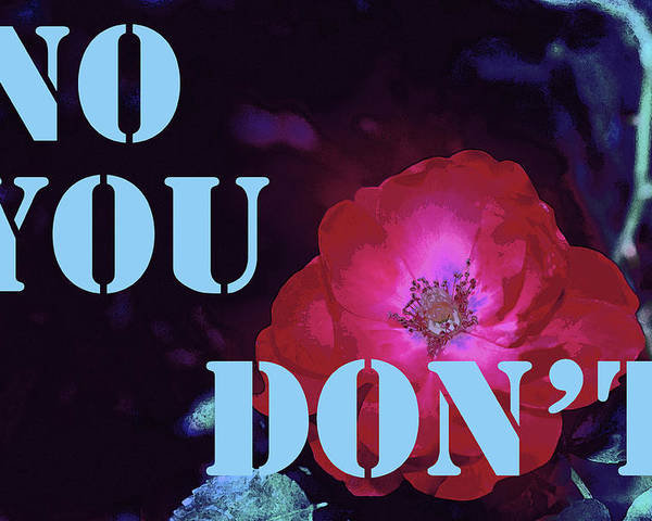 No You Don't Poster featuring the photograph No You Don't by Pamela Cooper