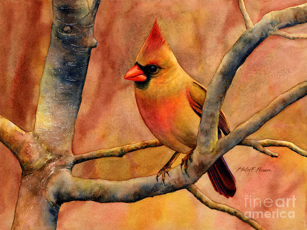 Cardinal Poster featuring the painting Northern Cardinal II by Hailey E Herrera