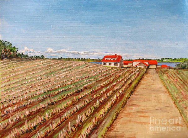 Landscape Poster featuring the painting Norway Farm by Nancie Johnson