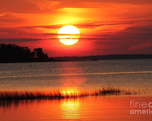 Sunset Mud Cove Poster featuring the photograph November Sunset by John Doble