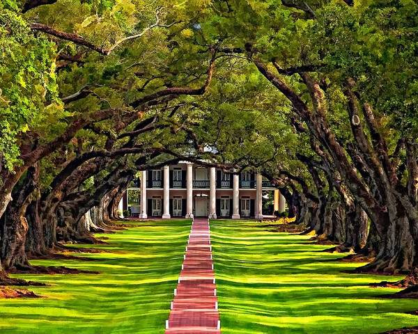 Oak Alley Plantation Poster featuring the photograph Oak Alley by Steve Harrington