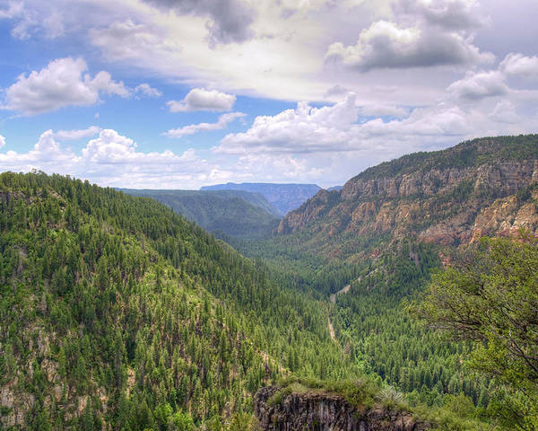Oak Poster featuring the photograph Oak Creek Canyon by Ricky Barnard