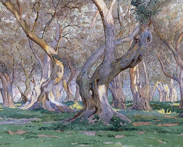 Tree Poster featuring the painting Oak Grove by Gunnar Widforss