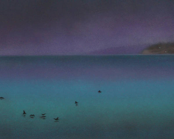 Nature Poster featuring the painting Ocean of Glass with Seabirds by Robin Street-Morris