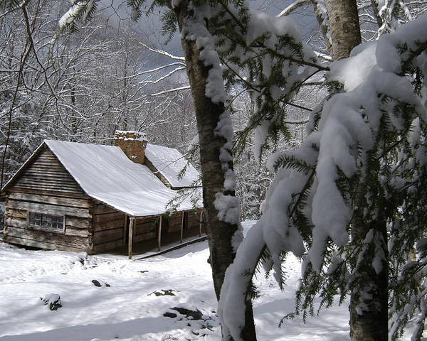 Roaring Fork Motor Nature Trail Poster featuring the photograph Ogle Farm Sleep Felt Snow by John Saunders