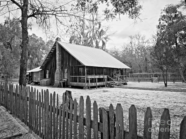 Chesser Homestead Poster featuring the photograph Okefenokee Home by Southern Photo