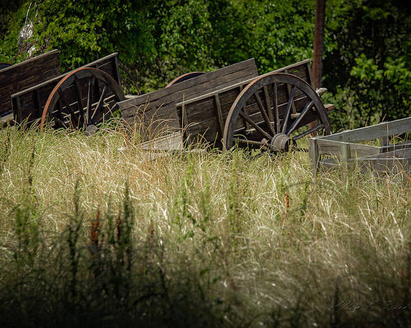 Old Wagons Poster featuring the photograph Old Cotton Bale Wagons by Allen Biedrzycki