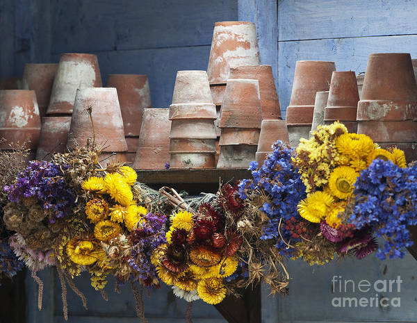 Old Flower Pots Poster featuring the photograph Old English Victorian Potting Shed by Tim Gainey
