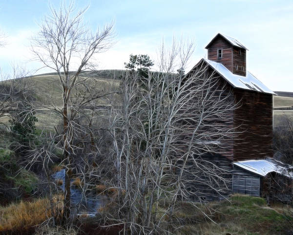 Cabin Poster featuring the photograph Old Grain Barn by Steve McKinzie