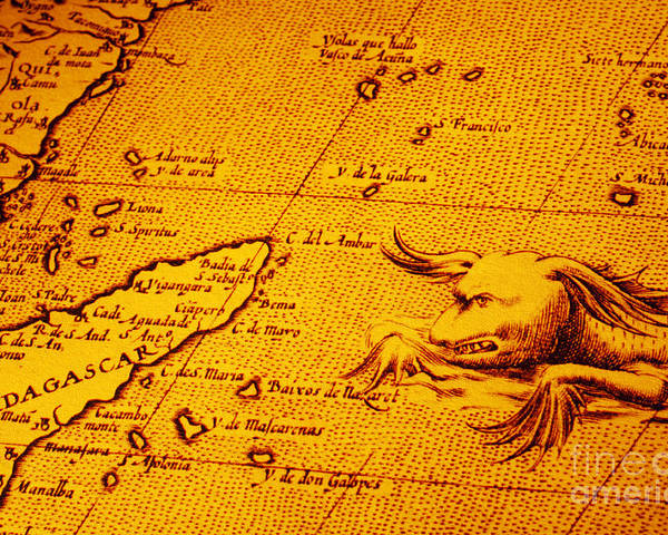 Old Map Of Africa Madagascar With Sea Monster Poster By Colin And