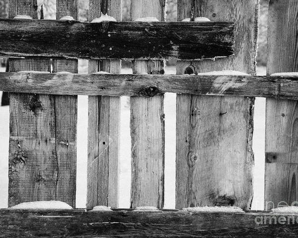 Old Poster featuring the photograph old patched up wooden fence using old bits of wood in snow Forget by Joe Fox