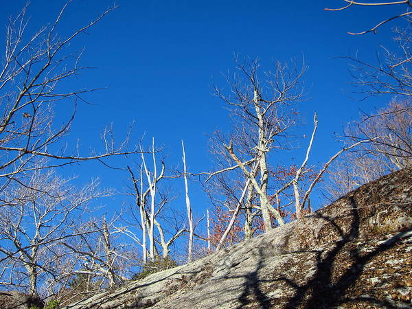 Old Poster featuring the photograph Old Rag Hiking Trail - 121245 by DC Photographer