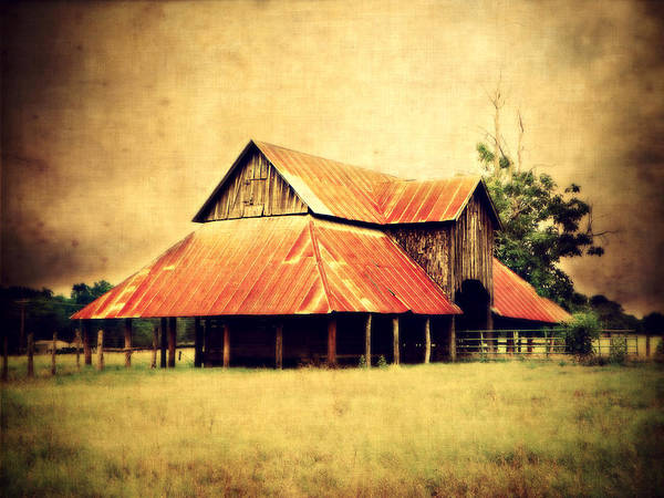 Barn Poster featuring the photograph Old Texas Barn by Julie Hamilton