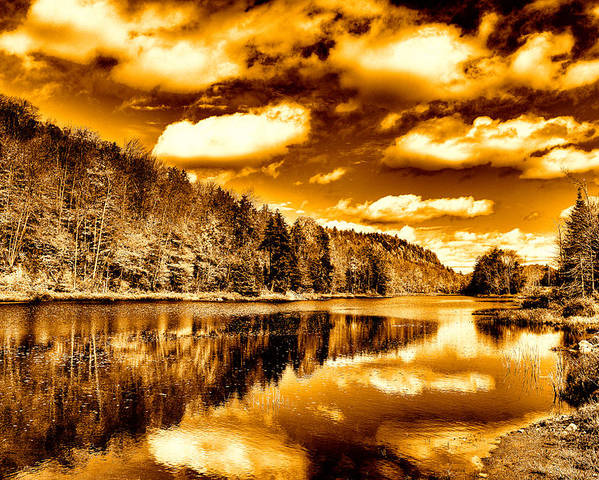 Landscapes Poster featuring the photograph On Golden Pond by David Patterson