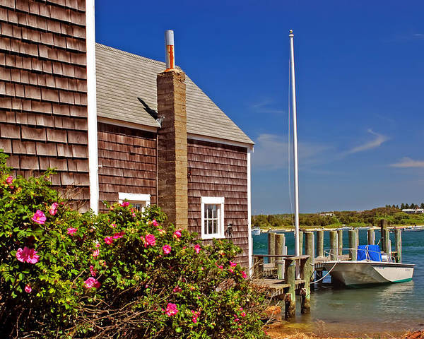 Cape Cod Poster featuring the photograph On The Cape by Joann Vitali