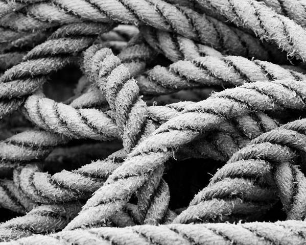 Rope Poster featuring the photograph On The Ropes 2 by Paul Huchton