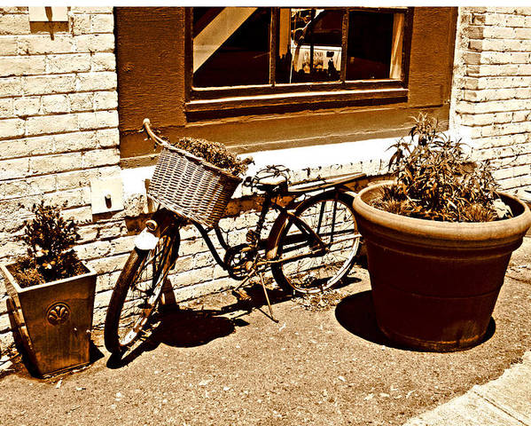 Bicycle Prints Poster featuring the photograph One Hour Parking by Joseph Coulombe