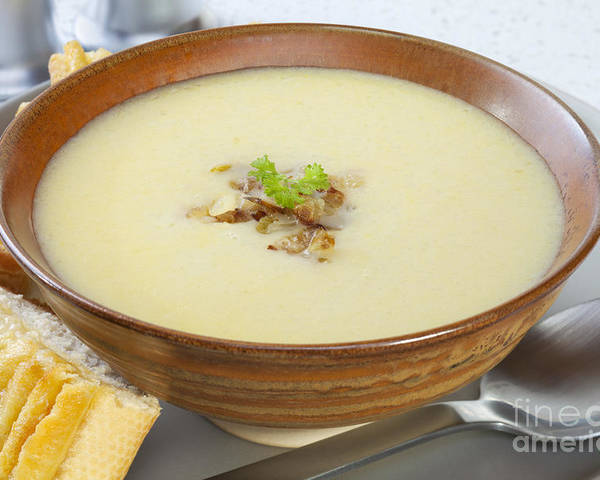 Soup Poster featuring the photograph Onion Soup by Colin and Linda McKie