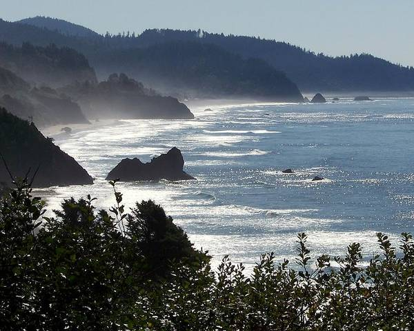 Oregon Coast Poster featuring the photograph Pacific Mist by Karen Wiles