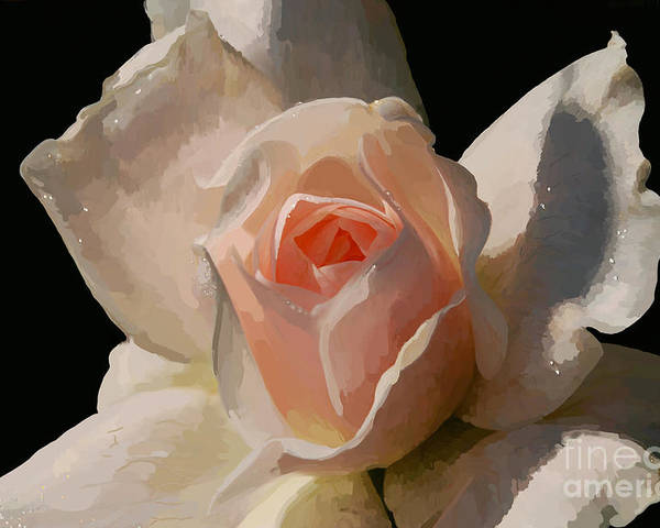 Rose Poster featuring the digital art Painted Rose by Lois Bryan