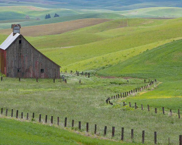 Palouse Poster featuring the photograph Palouse Barn And Fence by CJ Middendorf
