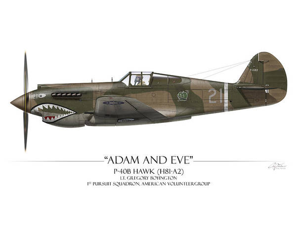 Aviation Poster featuring the painting Pappy Boyington P-40 Warhawk - White Background by Craig Tinder