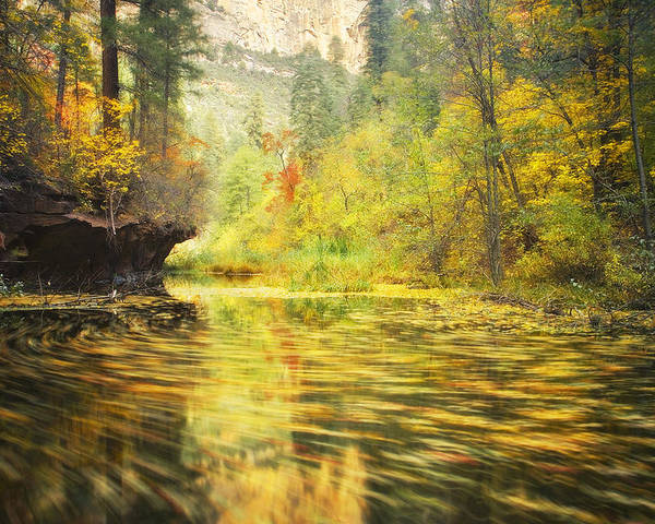 Autumn Poster featuring the photograph Parade Of Autumn by Peter Coskun