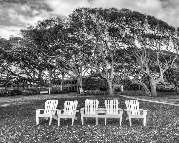 Clouds Poster featuring the photograph Park Under The Oaks by Debra and Dave Vanderlaan