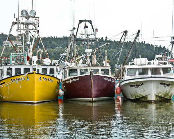 Poster featuring the photograph Parked Fishing Boats by Cheryl Baxter