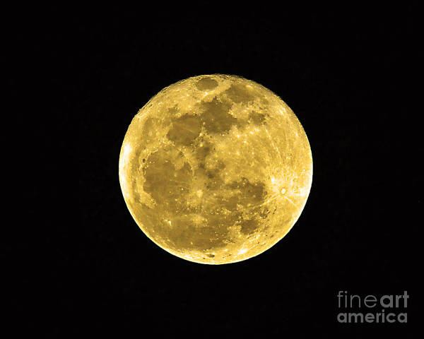 Moon Poster featuring the photograph Passover Full Moon by Al Powell Photography USA