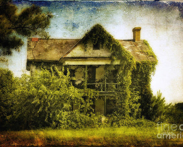 House Poster featuring the photograph Patiently Waiting by Lois Bryan