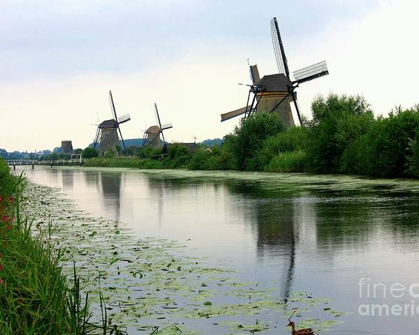Holland Poster featuring the photograph Peaceful Dutch Canal by Carol Groenen