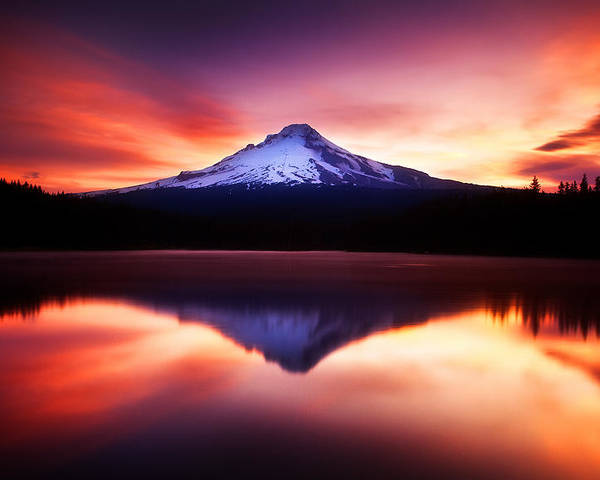 Trillium Lake Poster featuring the photograph Peaceful Morning On The Lake by Darren White