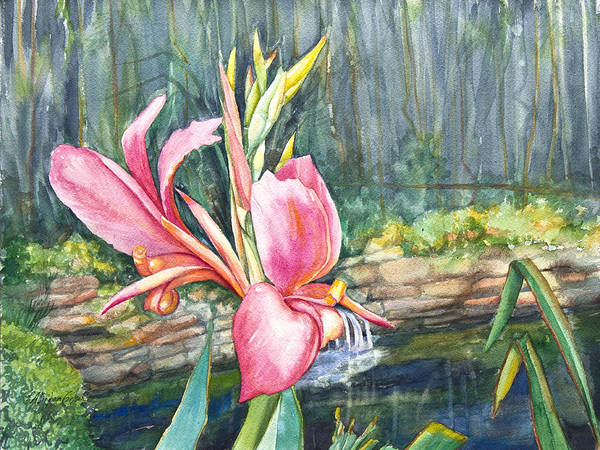 Pallinghamcarlson Poster featuring the painting Peach Canna By The Pond by Patricia Allingham Carlson
