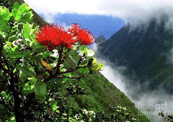 Ohia Lehua Poster featuring the photograph Peles Flower by James Temple