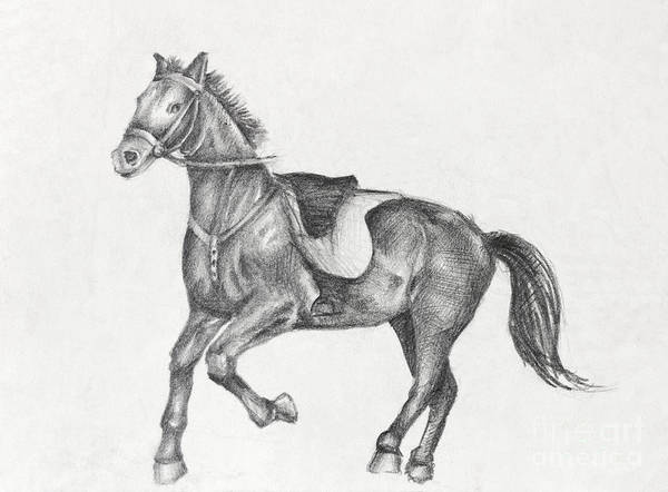 Run Poster featuring the drawing Pencil Drawing Of A Running Horse by Kiril Stanchev