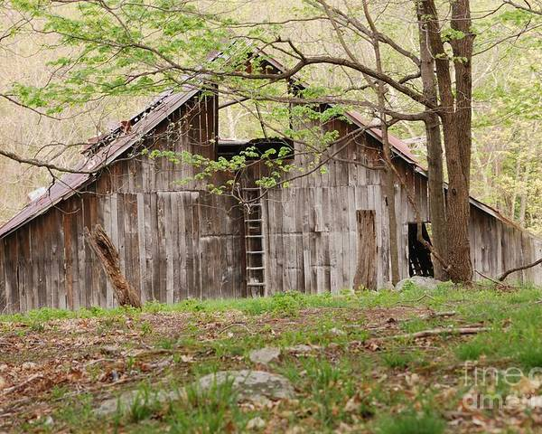 Pendleton County Poster featuring the photograph Pendleton County Barn by Randy Bodkins